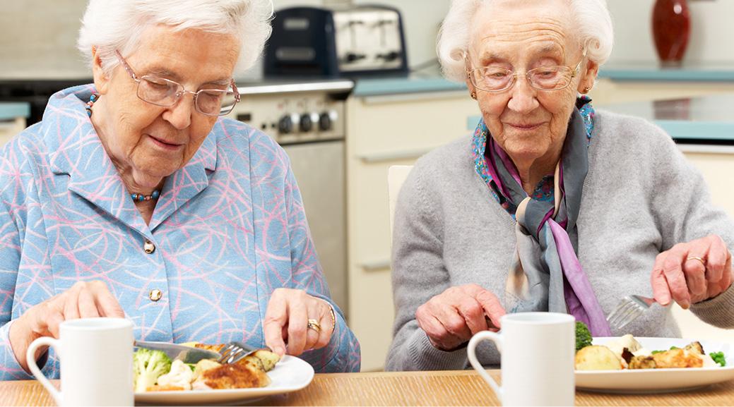 Fresh Meals Delivered >> Home Delivered Meals | Lutheran Social Service of MN